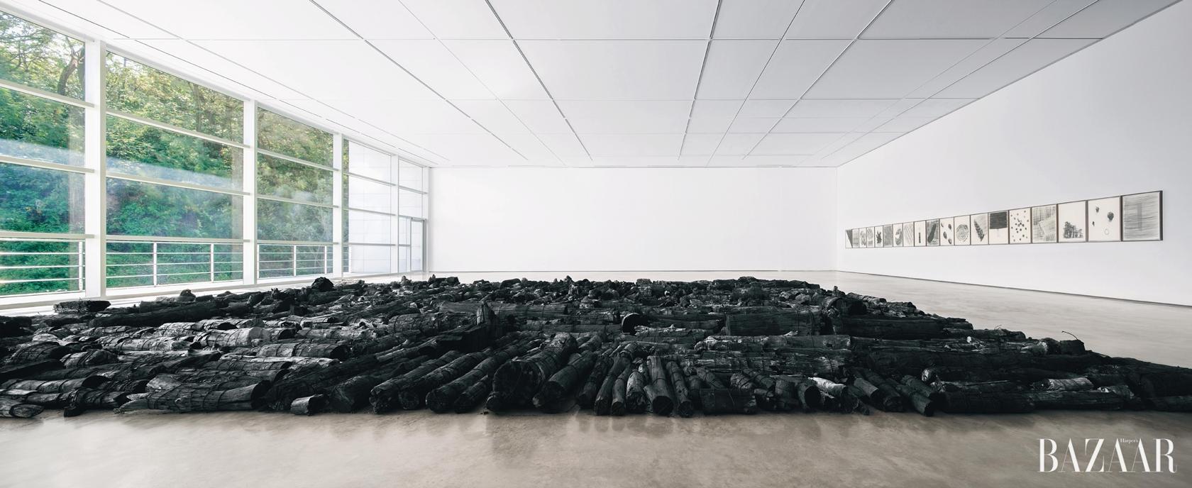 'Landscape', 불탄 목재, 18×16m, 대구 미술관 전시 전경, 2014