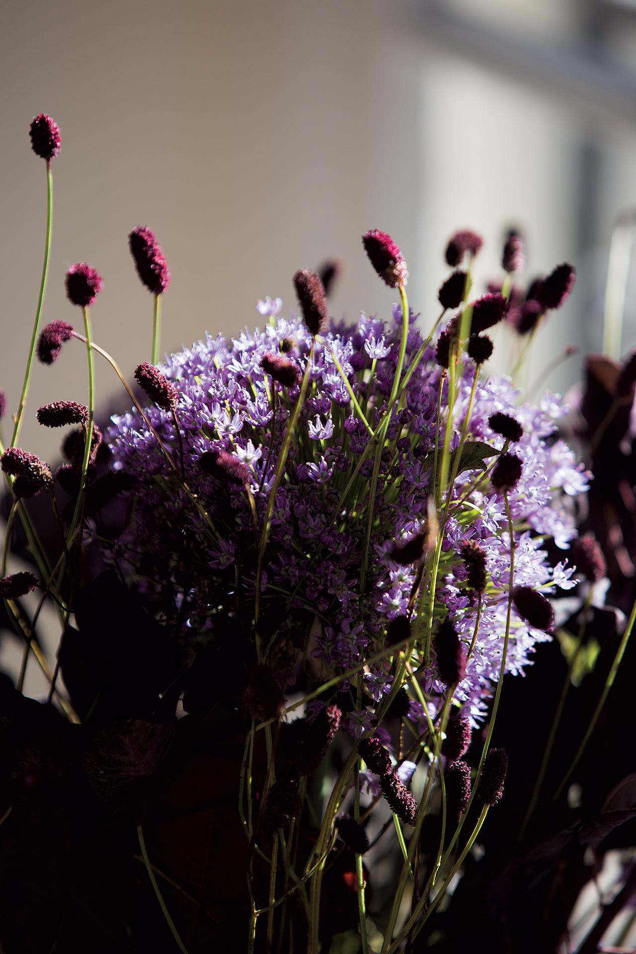 세라믹 바닥을 연상시키는 컬러를 가진 꽃들