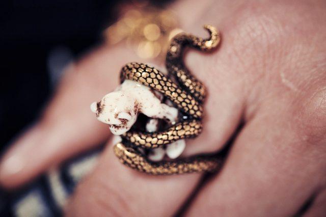 호랑이, 뱀과 같은 야생 동물 모티프에 프랑스 전통 제작 방식인 투알 드 주이 기법을 가미했다.