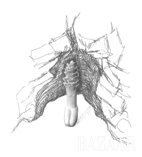 'Topiary'의 스케치