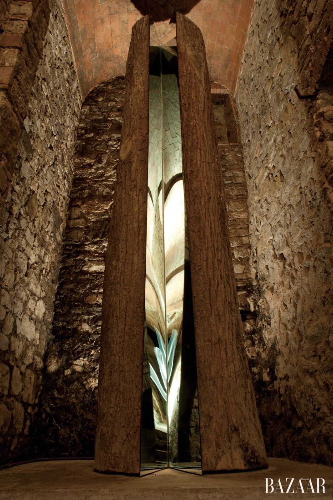미켈란젤로 피스톨레토, 'L'albero di Ama. Divisione e Moltiplicazione Dello Specchio', 2000