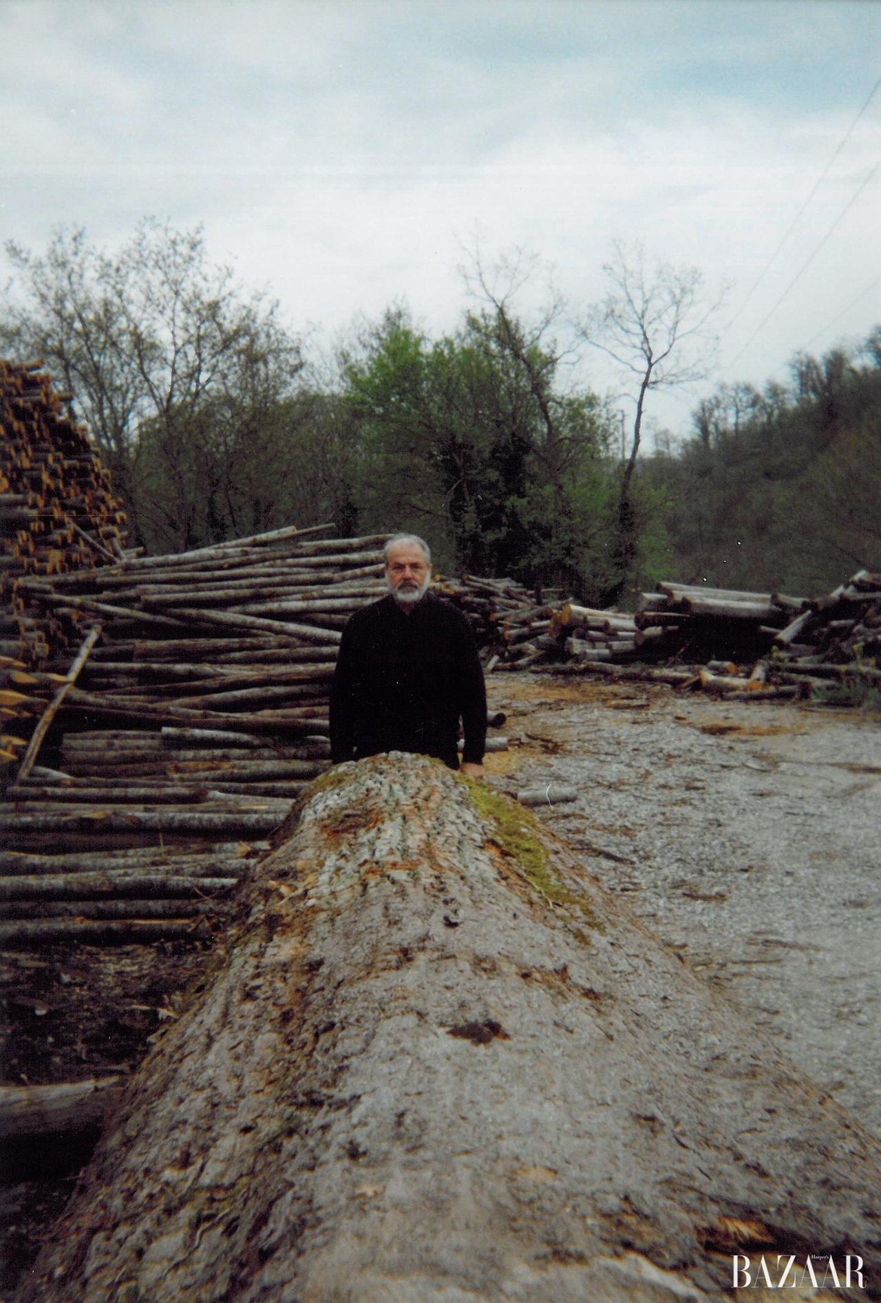 작품에 필요한 나무를 채집 중인 미켈란젤로 피스톨레토