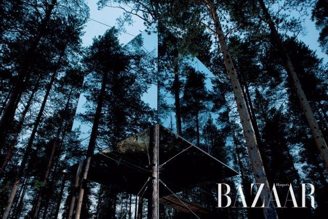 12월의 고독 - 하퍼스 바자 Harper's BAZAAR Korea 2016년 12월호