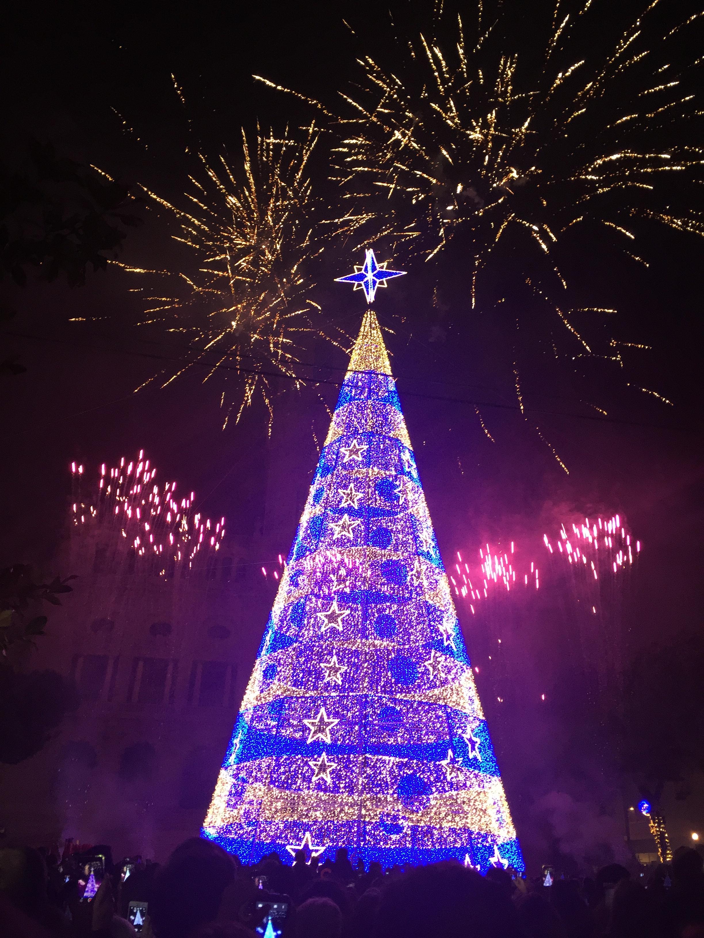 전 세계에서 보내온 반짝반짝 크리스마스 풍경!