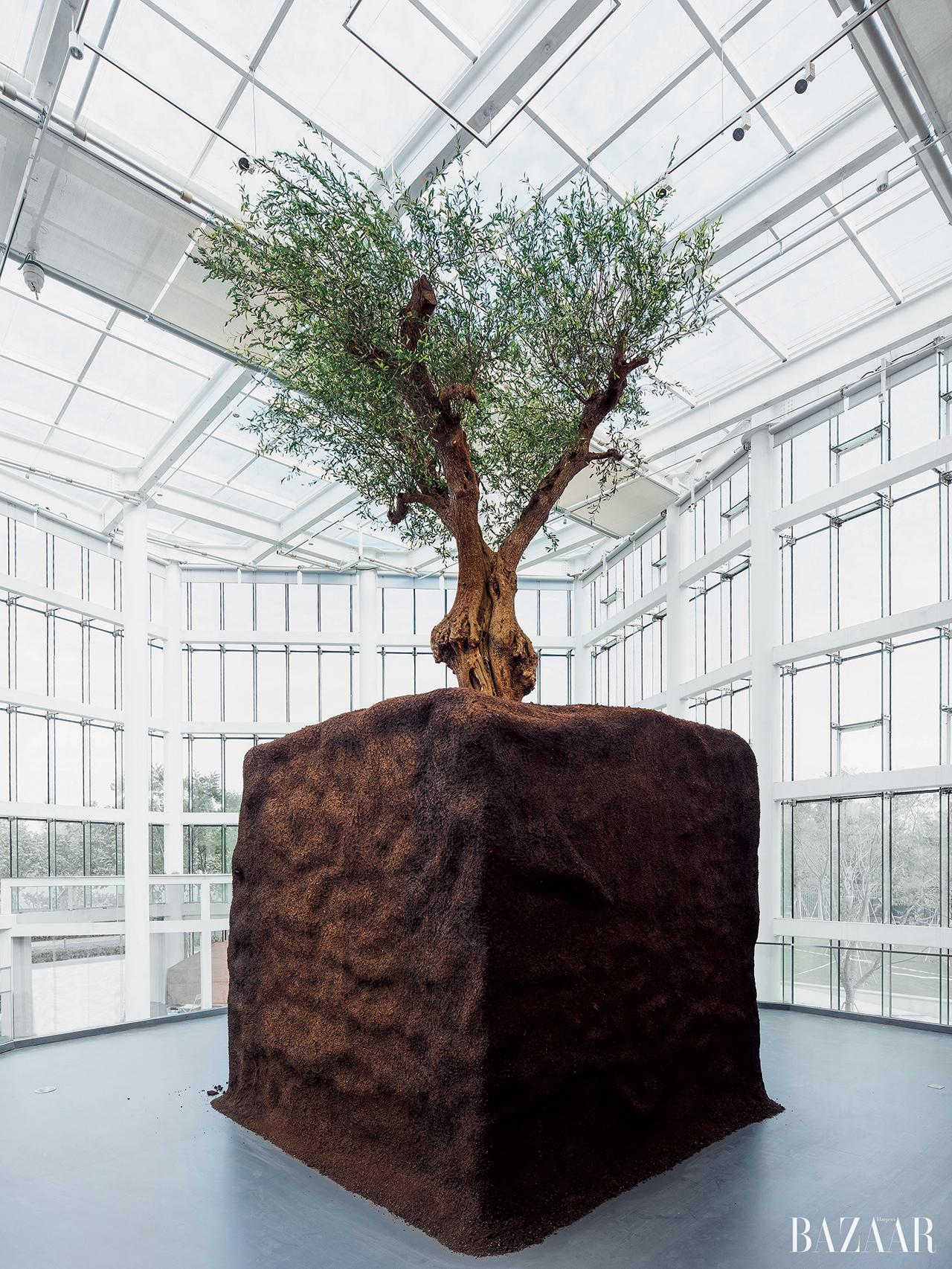 유즈 뮤지엄의 로비를 장식한 마우리치오 카텔란의 나무