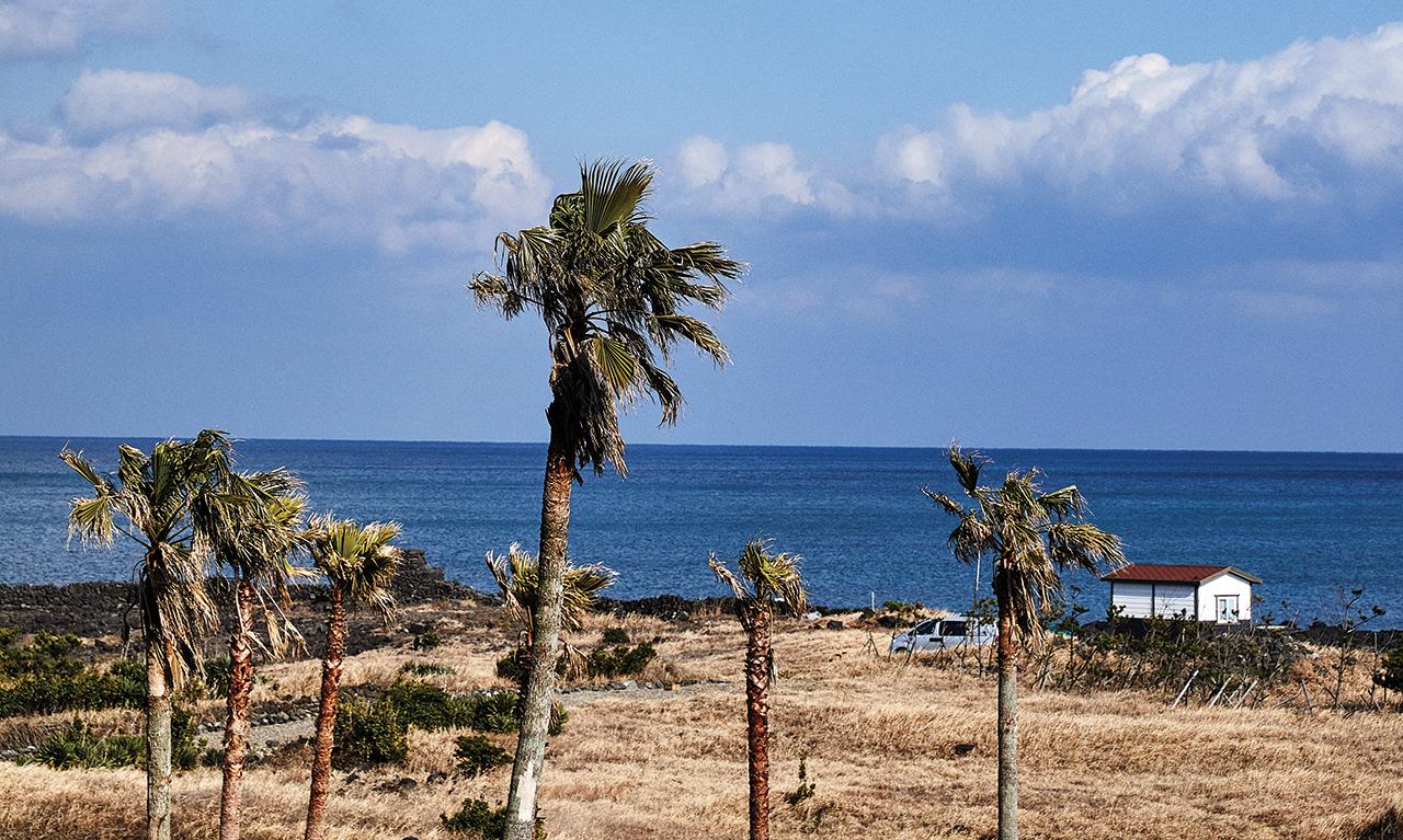 제주 표선에 위치한 해비치 호텔앤드리조트 앞의 바닷가