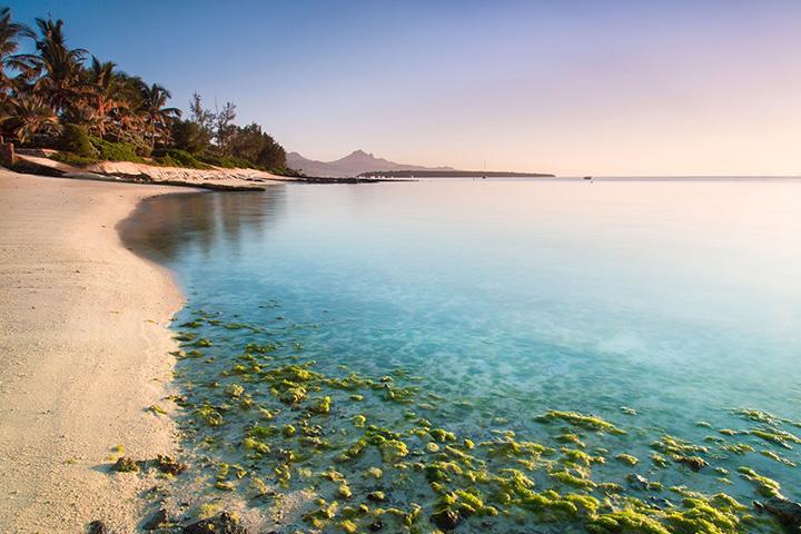 8. 모리셔스|더 없이 아름다운 인도양의 섬 모리셔스. 독립 50주년을 맞는 2018년을 위한 각종 행사를 마련하고 있기에, 여행 적기인 한 해가 될 것이다.