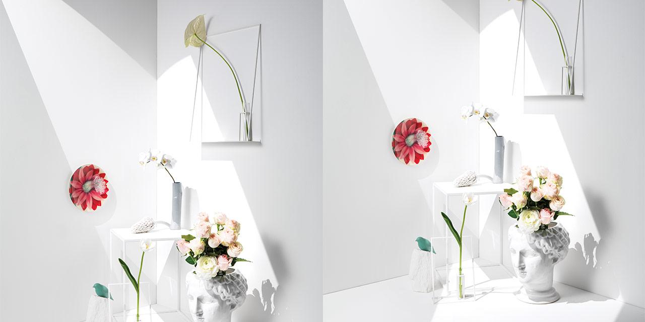 화이트 큐브 속에 놓인 꽃들의 고요한 시간