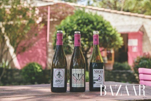 앙리 밀랑에서 생산되고 있는 레드 와인들. 맨 왼쪽의 병 '하루'는 포도 수확을 할 때 도와준 일본 친구들에게 고마움을 표현하기 위해 지은 이름이다.